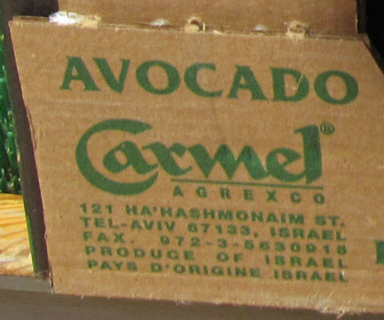 carmel_avocado